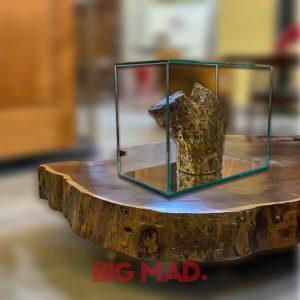 Escultura de Madeira Macica Tora em Vidro