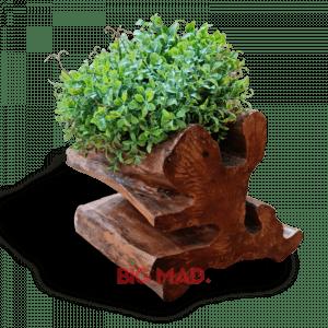Vaso tora de madeira guaranta